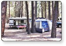 Enjoy getting back to nature at Guest First RV Resorts.