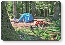 Guest First RV Resorts properties offer the finest tent camping